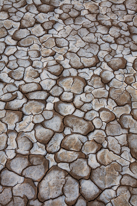Mud cracks in a dry lake bed, Anza-Borrego Desert State Park, California.